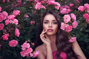 Обои Розы Шатенка Взгляд Руки Девушки фото