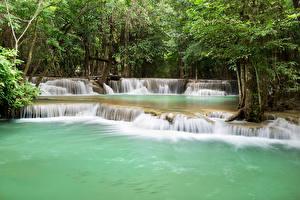 Обои Парки Таиланд Водопады Деревья Природа фото
