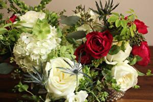 Обои Букеты Розы Гортензия Цветы фото