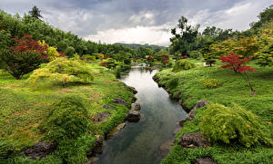 Картинка Франция Парки Пруд Траве Кусты Дерево Eden park Природа