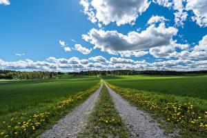 Фотографии Пейзаж Дороги Поля Небо Облачно Природа