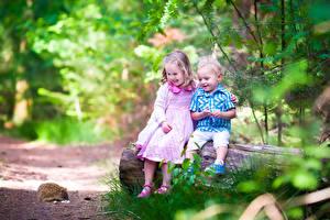 Фотографии Ежики Девочки Мальчики Двое Ствол дерева Улыбка Сидит Дети