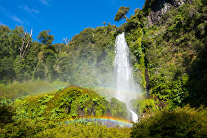 Картинки Чили Парки Водопады Радуга Утес Кусты Conguillio National Park Природа