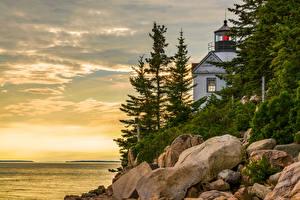 Обои Штаты Небо Берег Маяк Камень Ели Bass Harbor Lighthouse Природа