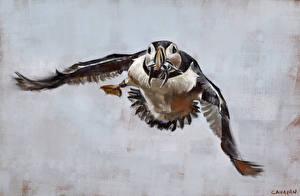 Обои Птицы Рисованные Тупики Полет Крылья Животные фото