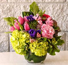 Обои Букеты Тюльпаны Гортензия Гвоздики Цветы фото