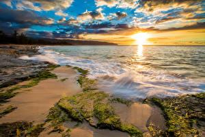 Обои Тропики США Рассветы и закаты Побережье Волны Океан Гавайи Мох Облака Солнце Природа фото