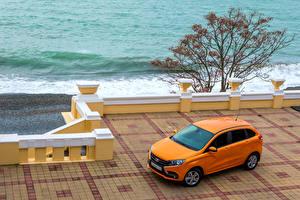 Картинки Лада Оранжевый 2015-16 XRAY (GAB) Автомобили