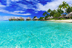 Обои Французская Полинезия Тропики Море Побережье Небо Бора-Бора Бунгало Пальмы Природа фото