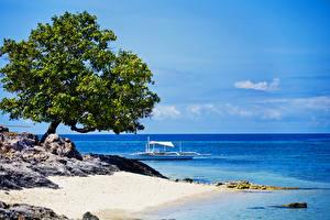 Обои Филиппины Побережье Море Небо Деревья Природа фото