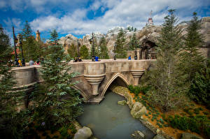 Обои США Парки Диснейленд Мост Пруд Калифорнии Анахайм Ель Природа