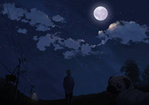 Картинки Небо Ночь Луны Мопса Фэнтези