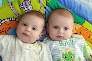 Обои Младенцы Двое Взгляд Дети фото