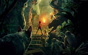 Обои Пантеры Обезьяны Мальчики Факел The Jungle Book 2016 Фильмы
