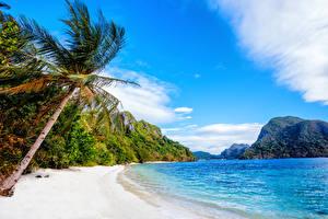 Обои Филиппины Побережье Пейзаж Горы Море Пальмы Природа фото