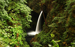 Обои США Водопады Скала Metlako Falls Oregon Природа фото