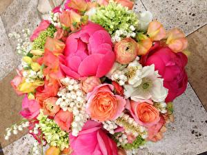 Обои Букеты Пионы Лютик Розы Цветы
