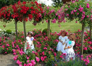 Фотография Парк Розы Кукла Девочки Трое 3 Grugapark Essen Природа