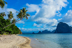 Обои Филиппины Пейзаж Тропики Побережье Горы Небо Море Пальмы Песок Облака Природа фото