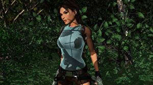 Фотографии Tomb Raider Tomb Raider Anniversary Лара Крофт Девушки