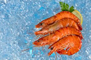 Обои Морепродукты Креветки Лед Еда фото