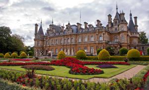 Фотографии Англия Парки Дворец Газоне Кустов Waddesdon Manor город