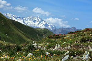 Фотографии Италия Горы Небо Камни Пейзаж Трава Penser Joch Природа