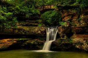Обои США Парки Водопады Мосты Hocking Hills State Park Природа фото