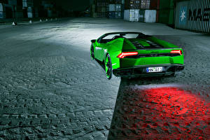 Обои Lamborghini Зеленый Вид сзади Spyder Novitec Автомобили