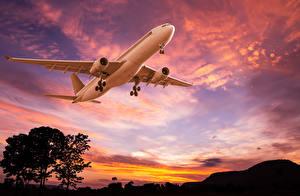 Фотография Самолеты Пассажирские Самолеты Небо Рассветы и закаты Авиация