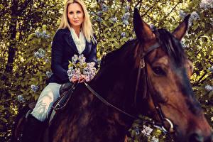 Обои Лошади Блондинка Взгляд Девушки Животные фото