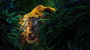 Обои Большие кошки Тигры The Jungle Book 2016 Фильмы Животные фото