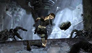 Фото Tomb Raider Пауки Лара Крофт Игры Девушки 3D_Графика