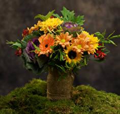 Обои Букеты Герберы Хризантемы Подсолнухи Ваза Цветы фото