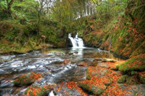 Фото Ирландия Водопады Камни Мох Деревья HDR Mullinhassig Waterfall Природа