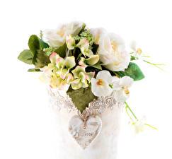 Обои Букеты Орхидеи Эустома Гортензия Белый фон Ваза Сердце Цветы фото