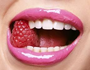 Обои Губы Малина Крупным планом Зубы фото