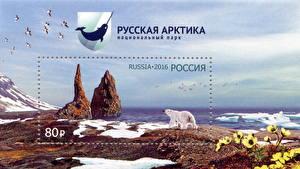 Обои Белые Медведи Почтовая марка National Park Russian Arctic фото