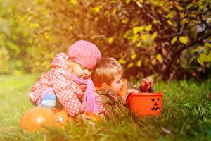 Картинка Осенние Хеллоуин Тыква Мальчики Девочки ребёнок