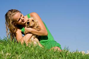 Обои Собаки Блондинок Улыбка Трава молодые женщины