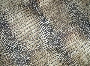 Обои Текстура Крокодил Кожа материал skin