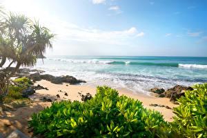 Обои Побережье Море Небо Пляж Природа фото