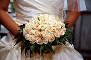 Картинка Букеты Розы Свадьба Цветы