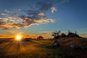 Фотография Рассветы и закаты Небо Луга Солнца Лучи света Облачно Природа