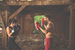 Обои Мужчины Бокс Шатенки 2 молодая женщина Спорт