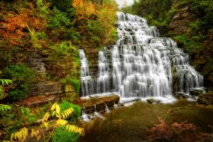 Обои США Парки Водопады Нью-Йорк Hector falls Природа фото