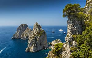 Фотография Италия Море Скала Capri Природа