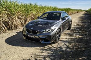 Фотографии BMW Серый 2016 M2 Coupe авто