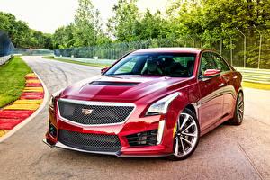 Обои Cadillac Красный 2015 CTS-V Автомобили фото