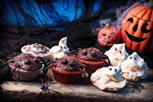 Фото Хеллоуин Выпечка Тыква Капкейк кекс Пауки Пища